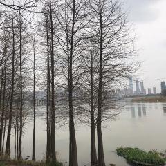 裕湘紗廠用戶圖片