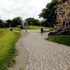 斯堪森堡用戶圖片