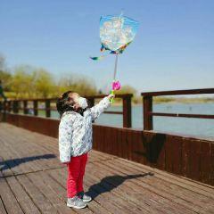 青年湖公園用戶圖片