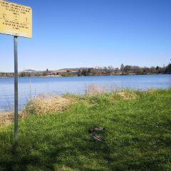 伯利.格裡芬湖用戶圖片