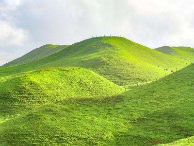 Nanshan Ranch