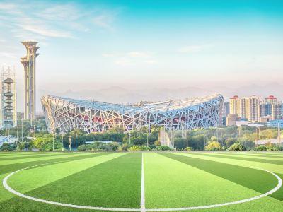 Bird's Nest (National Stadium)