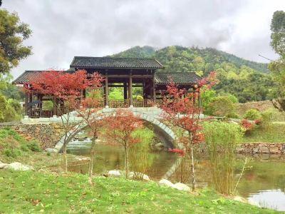 Tangli Forest Hot Spring Resort
