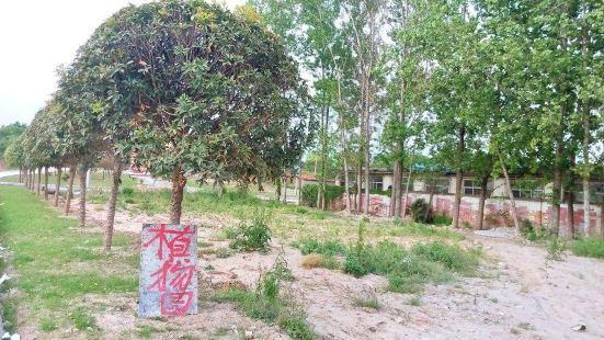 陝南珍稀植物園