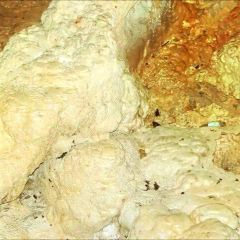 Rio Camuy Cave Park (Parque de las Cavernas del Rio Camuy) User Photo
