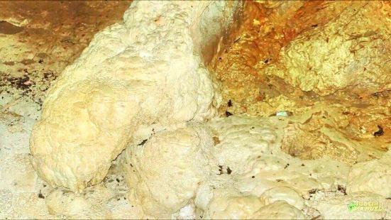 Rio Camuy Cave Park (Parque de las Cavernas del Rio Camuy)