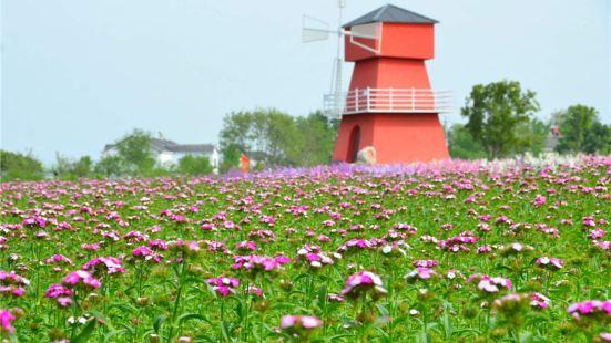 "Tongxin Huahai (""Sea of Flowers"")"