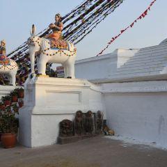 瑪珠廟用戶圖片
