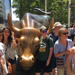 Charging Bull (Wall Street Bull) User Photo