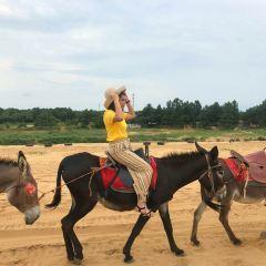 허우톈사막 여행 사진