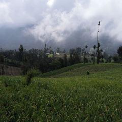 프로볼링고 여행 사진