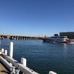 Fremantle User Photo