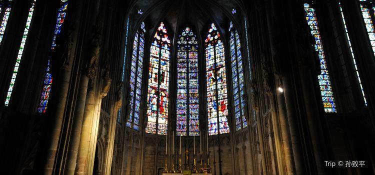 Basilique St Nazaire1