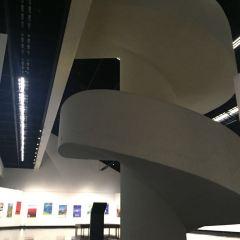 Hokkaido Museum of Modern Art User Photo