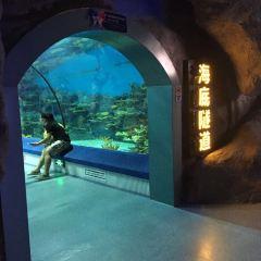 뤄위안완(나원만) 해양세계(하이양스제) 여행 사진