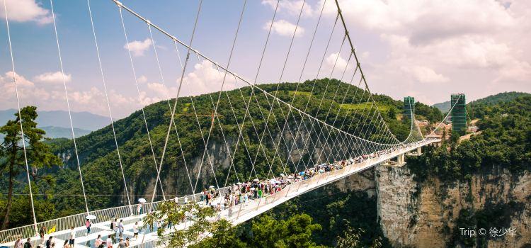 Zhangjiajie Grand Canyon Glass Bridge Travel Guidebook Must