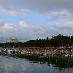 濱名湖用戶圖片