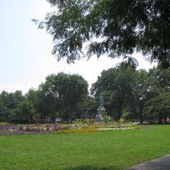 South Pond User Photo