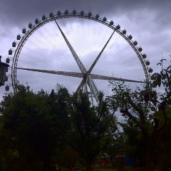 大觀公園用戶圖片
