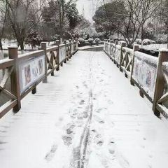 Yanfeng Temple User Photo