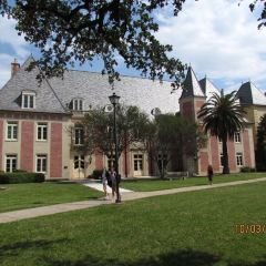 Louisiana State University User Photo