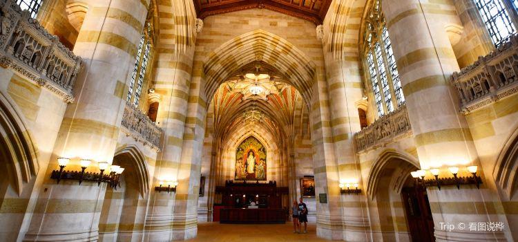 哈佛大學1