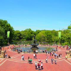 Central Park User Photo