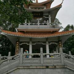 Longtoushan Forest Park User Photo