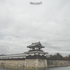 히로시마 성 여행 사진