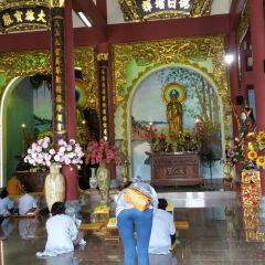 Linh Ung Pagoda User Photo