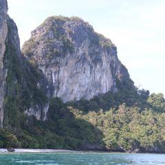 蚊子島用戶圖片