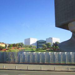 尼斯現代與當代美術館用戶圖片