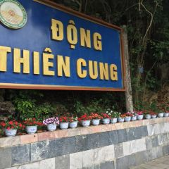Dong Thien Cung User Photo