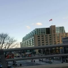 The Air Canada Centre User Photo
