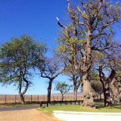 大康斯坦夏葡萄酒莊園用戶圖片