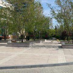 Yuyintang User Photo
