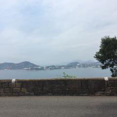 To Tei Wan User Photo