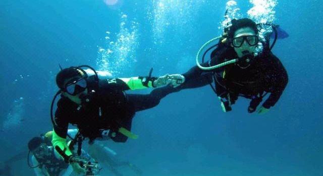 William Diving3