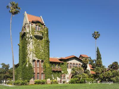 聖約瑟州立大學