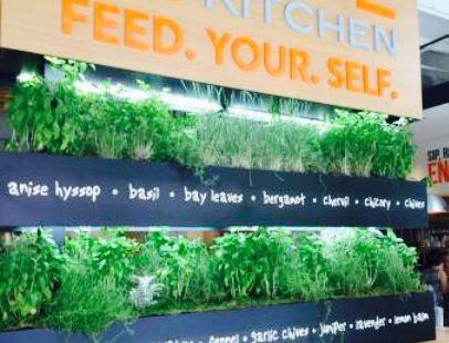 LYFE Kitchen