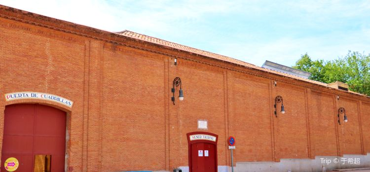 Bullfighting Museum