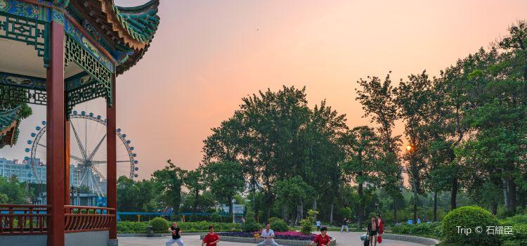 鄭州人民公園3
