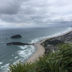 Mount Maunganui Base Track User Photo