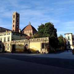 Lucca User Photo