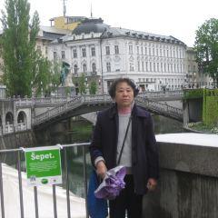 普烈舍倫廣場用戶圖片