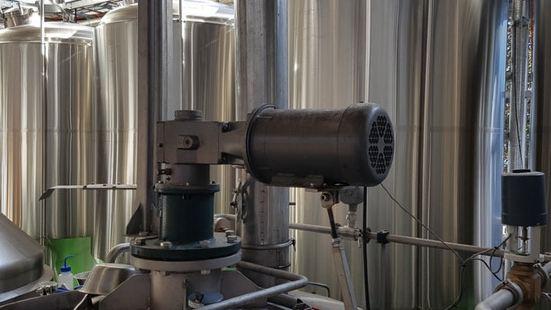 Rocks Brewing Co
