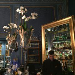 Blaue Bar用戶圖片