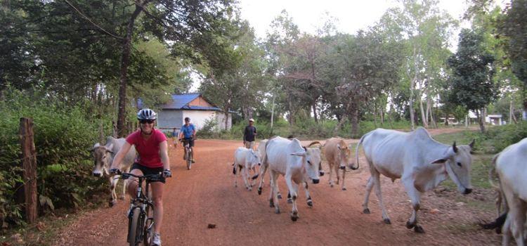 湄公河島嶼騎行觀光體驗1