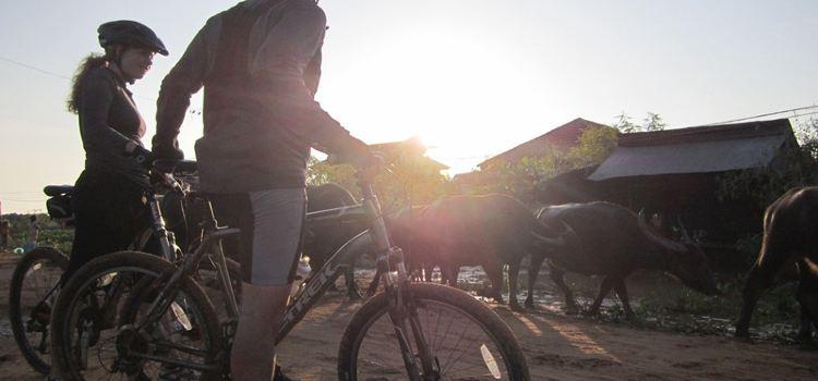 湄公河島嶼騎行觀光體驗