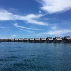 馬布島深潛用戶圖片